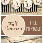 Fall-Banner-title5