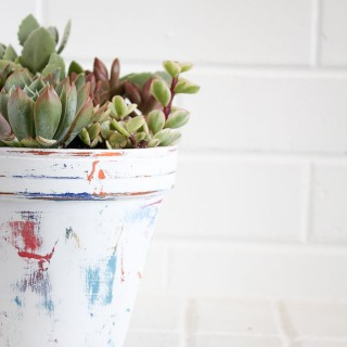 colorful+clay+painted+flower+pot+with+succulents 2