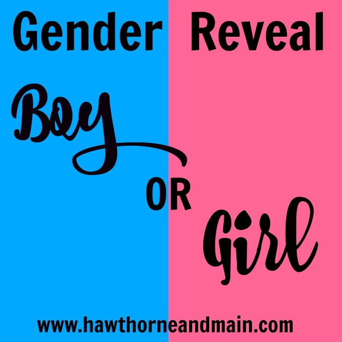 Gender Reveal! – HAWTHORNE AND MAIN