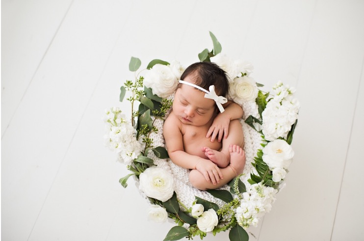 A few of our newest addition. Her newborn baby photos turned out so cute. I cannot decide which is my favorite. So many good ones!