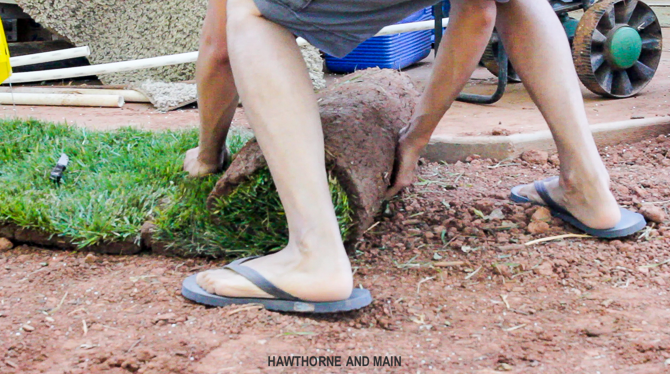 how-to-lay-sod