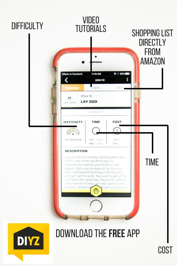 review-the-app-DIYZ
