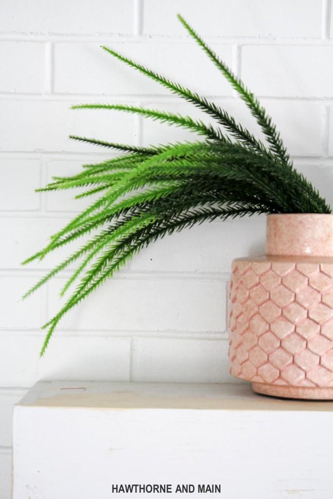 fern-in-pink-vase