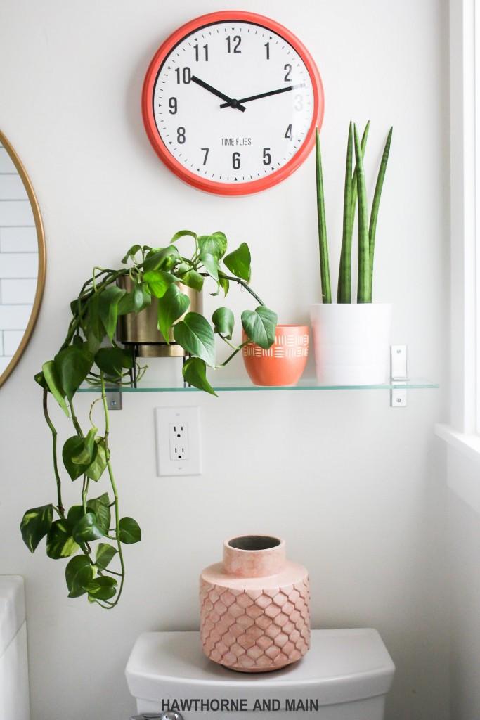 plants on shelf in bathroom